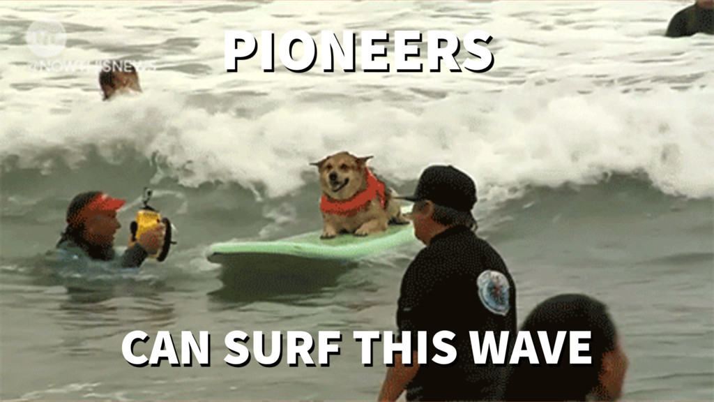CAN SURF THIS WAVE PIONEERS