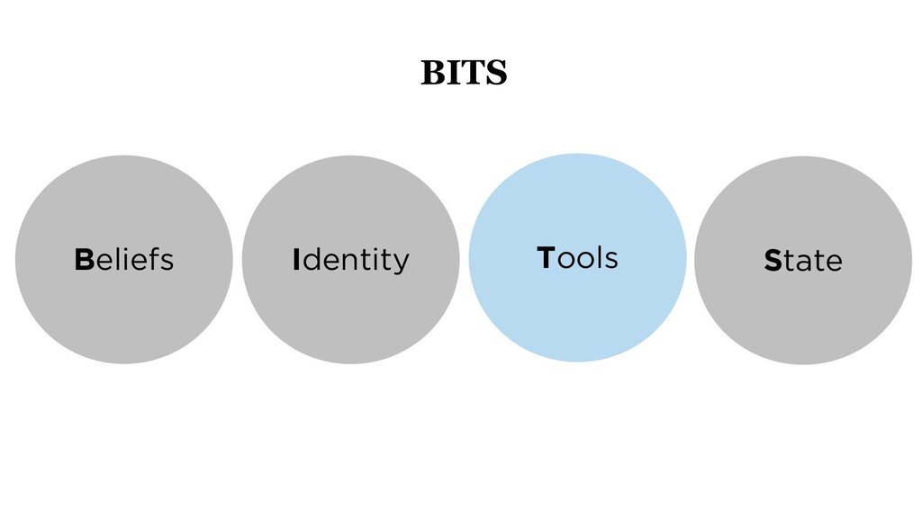 Beliefs Identity Tools State BITS