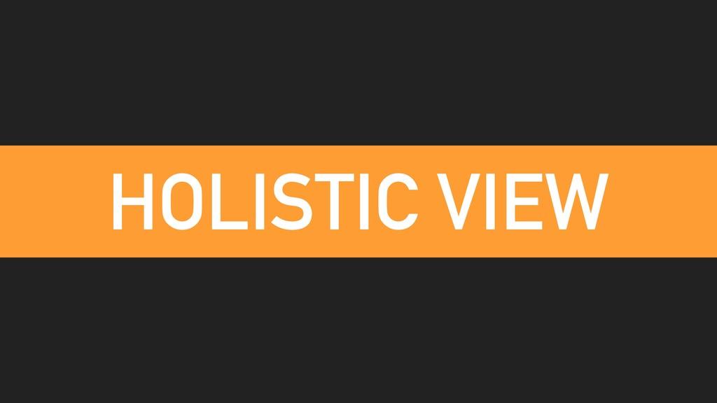 HOLISTIC VIEW