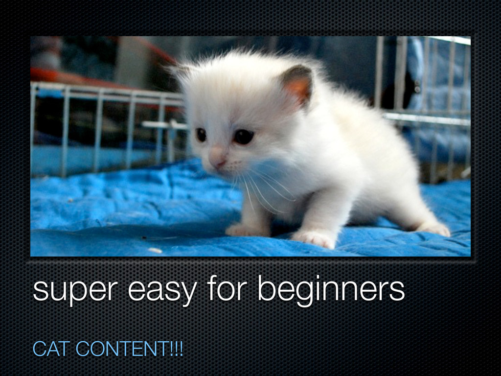super easy for beginners CAT CONTENT!!!