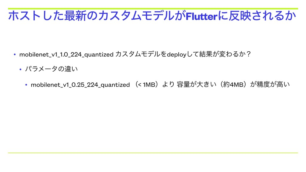 • mobilenet_v1_1.0_224_quantized ΧελϜϞσϧΛdeploy...