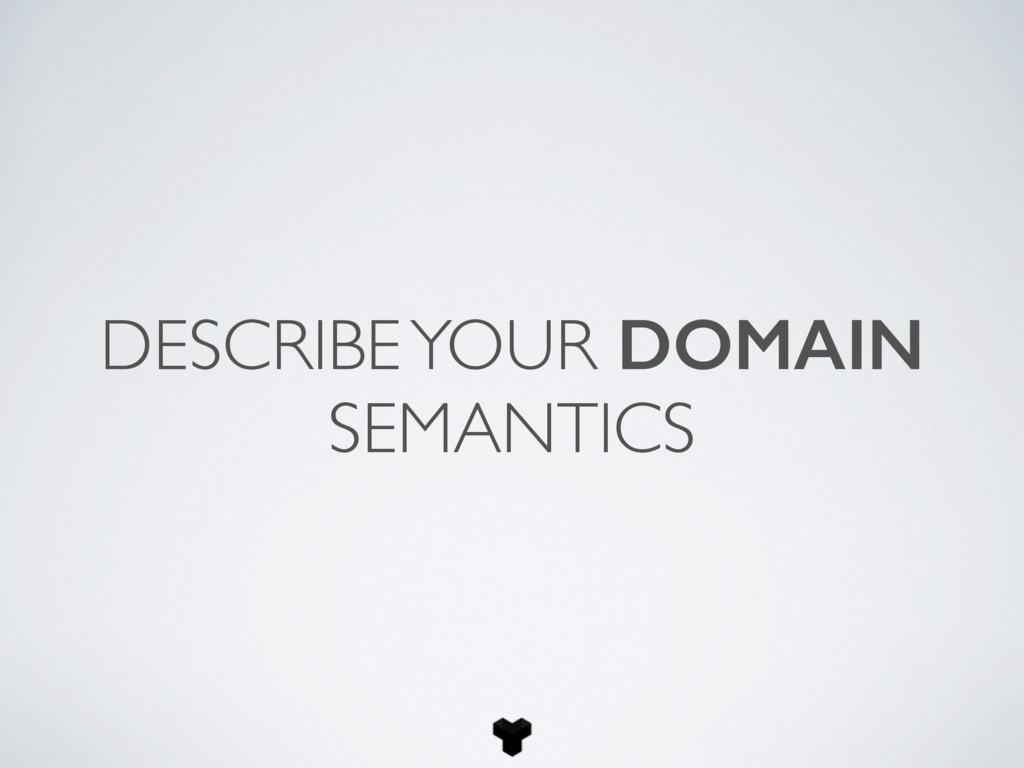 DESCRIBE YOUR DOMAIN SEMANTICS