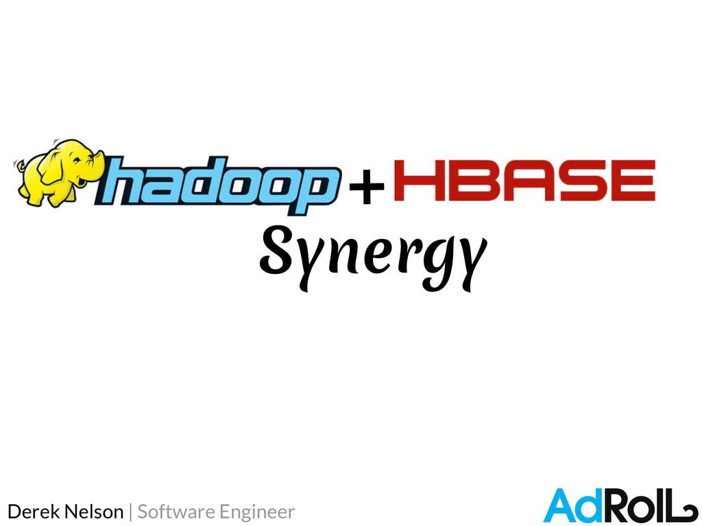Derek Nelson | Software Engineer Synergy