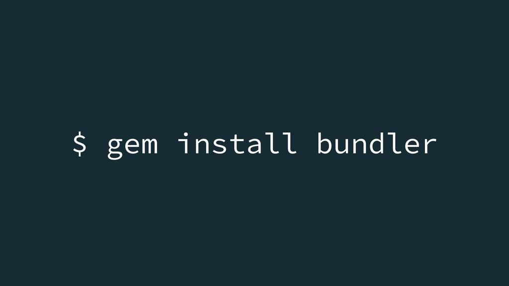 $ gem install bundler