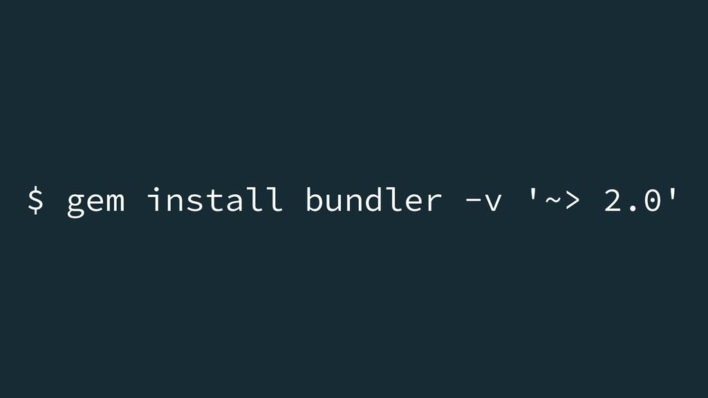 $ gem install bundler -v '~> 2.0'