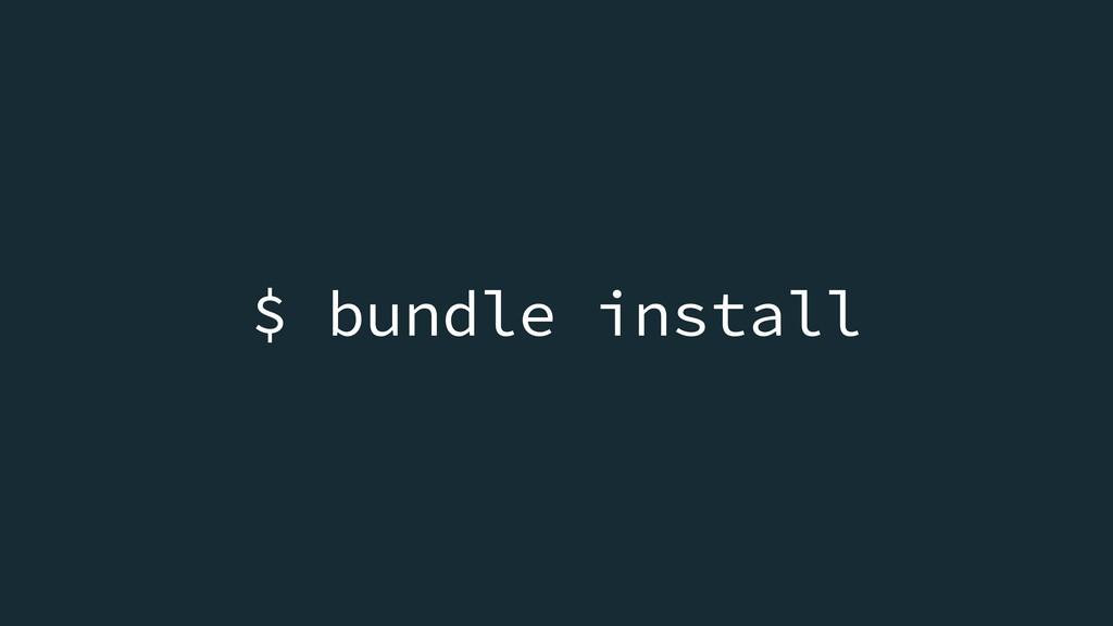 $ bundle install