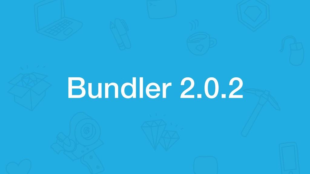 Bundler 2.0.2