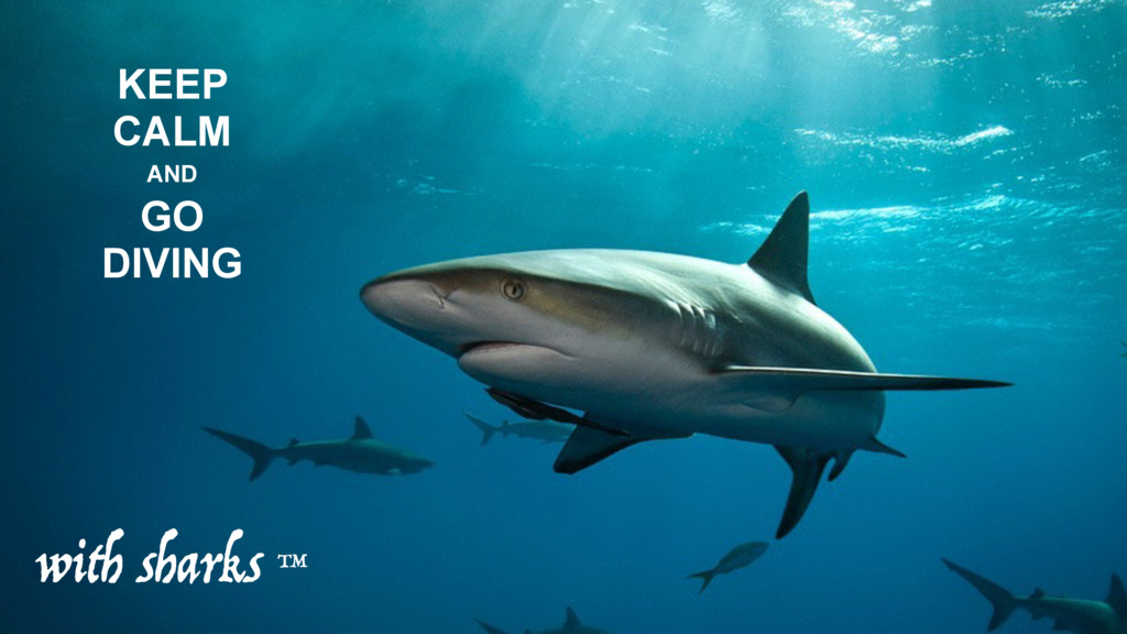 KEEP CALM AND GO DIVING with sharks ™