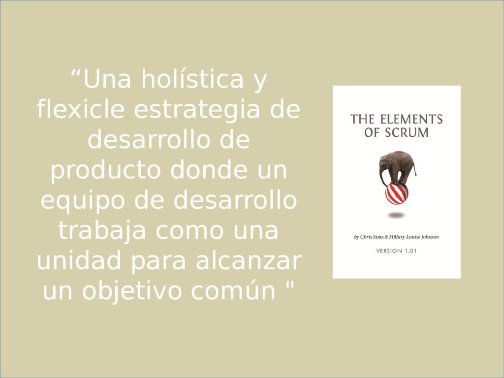 """""""Una holística y flexicle estrategia de desarro..."""