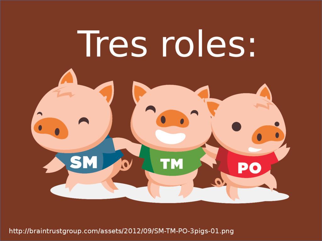 Tres roles: http://braintrustgroup.com/assets/2...