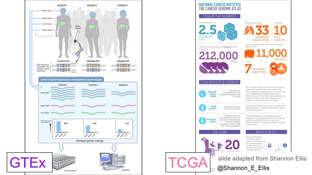 GTEx TCGA slide adapted from Shannon Ellis @Sha...