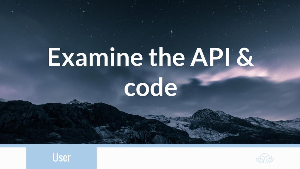 User Examine the API & code