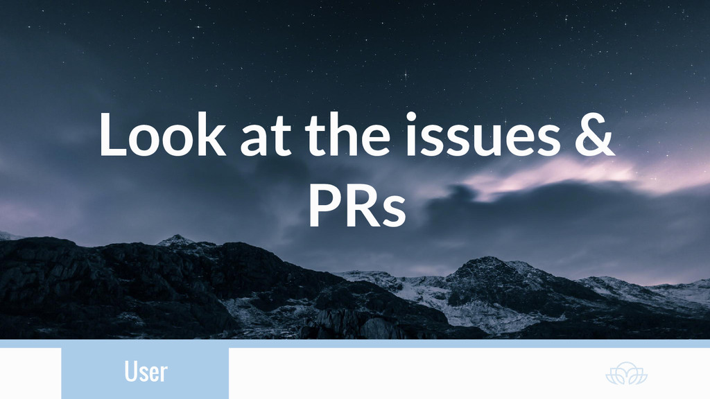 User Look at the issues & PRs