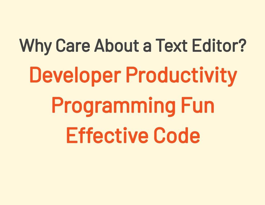 Developer Productivity Programming Fun Effectiv...