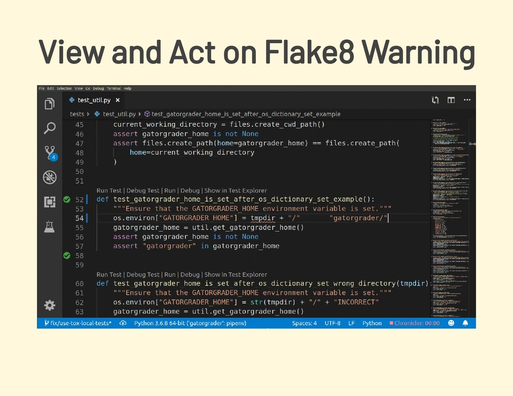 View and Act on Flake8 Warning