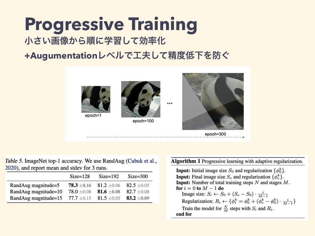 Progressive Training   খ͍͞ը૾͔Βॱʹֶशͯ͠ޮԽ   +Augu...
