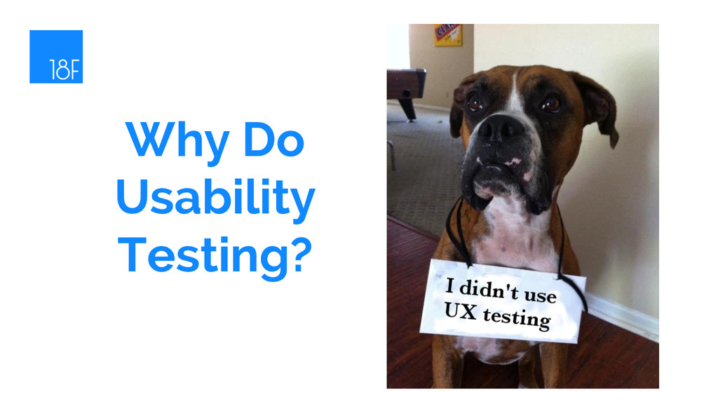 Why Do Usability Testing?
