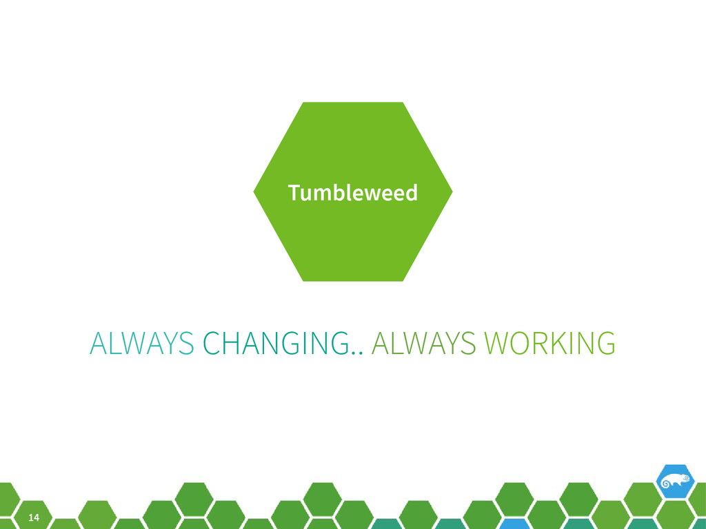 14 ALWAYS CHANGING.. ALWAYS WORKING Tumbleweed