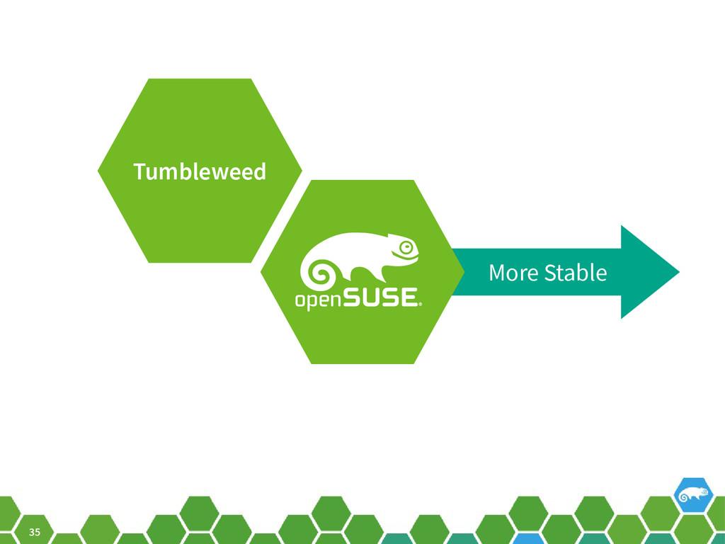 35 More Stable Tumbleweed