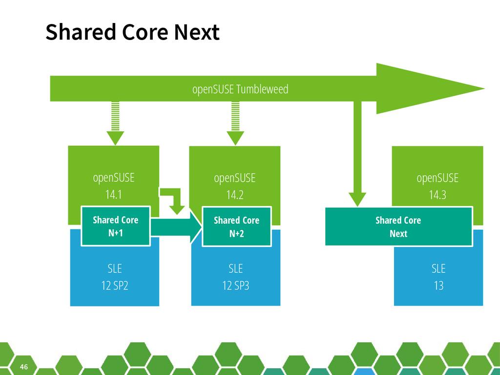 46 SLE 13 openSUSE 14.3 Shared Core Next openSU...