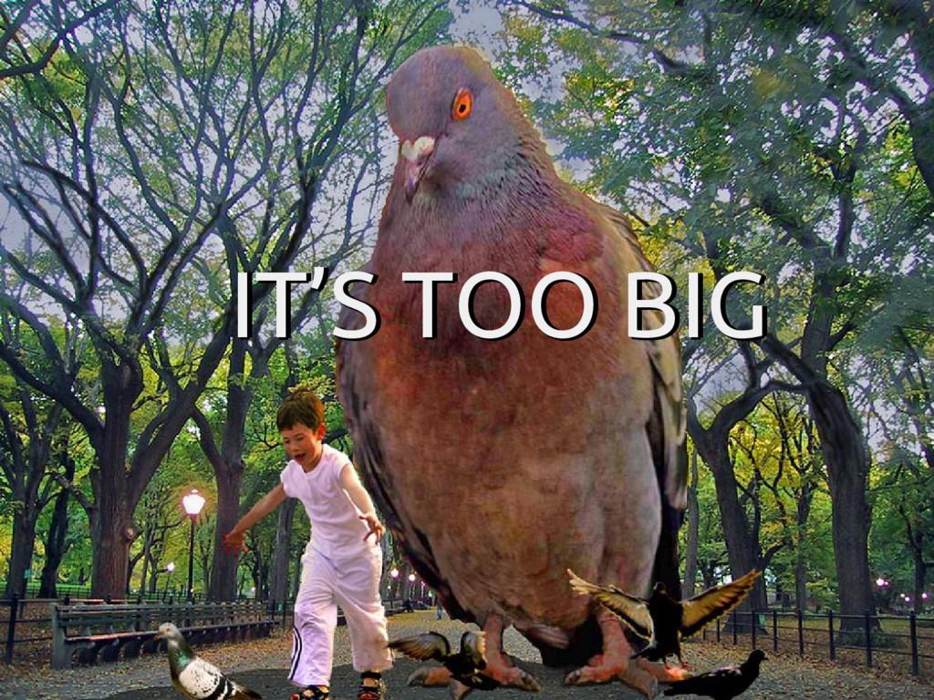IT'S TOO BIG IT'S TOO BIG IT'S TOO BIG