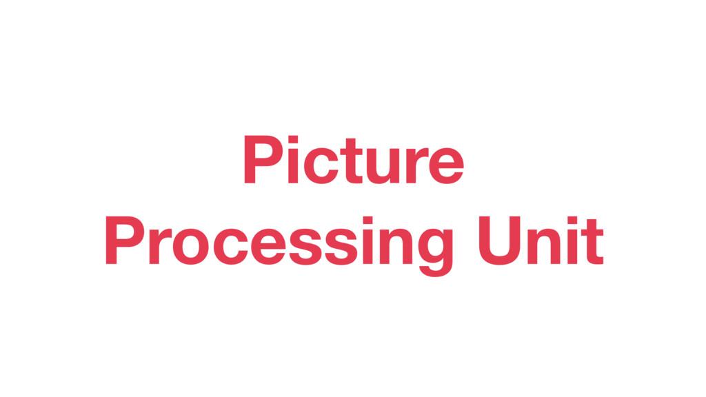 Picture Processing Unit
