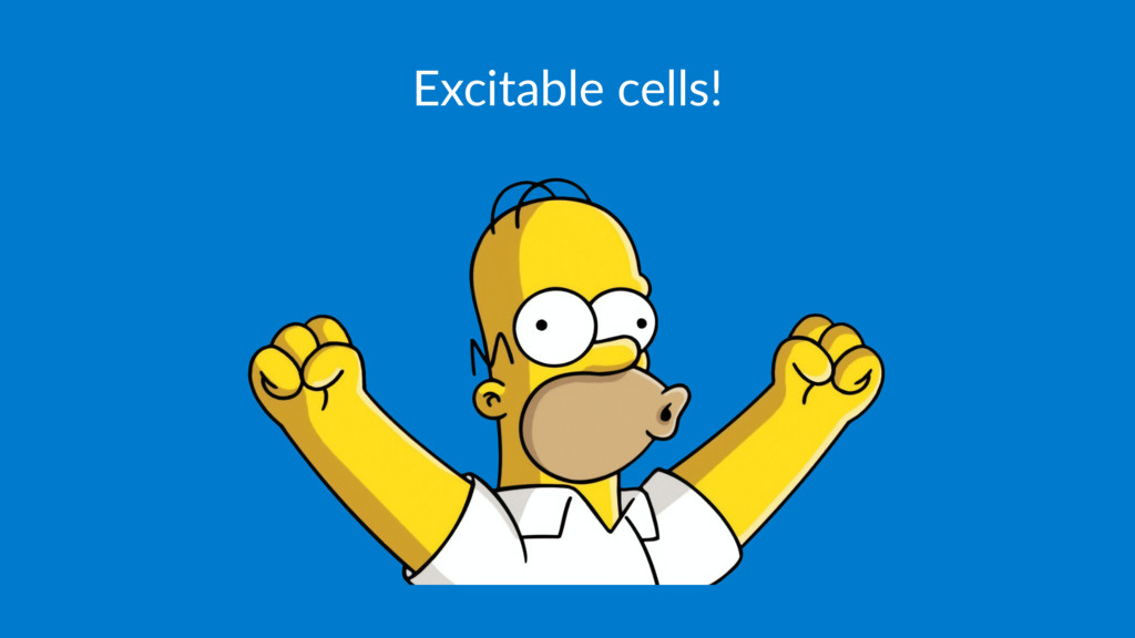 Excitable cells!