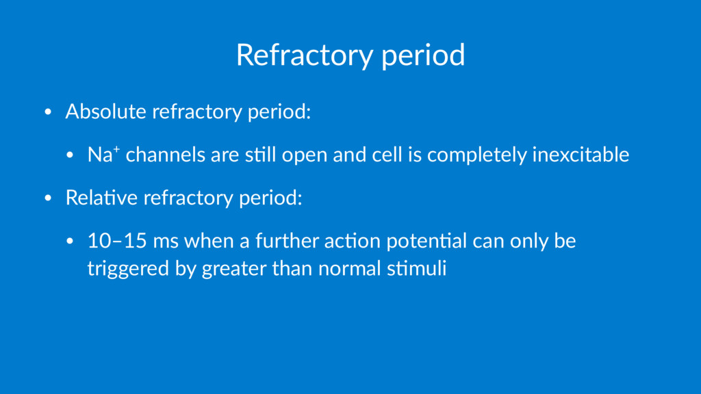 Refractory period • Absolute refractory period:...