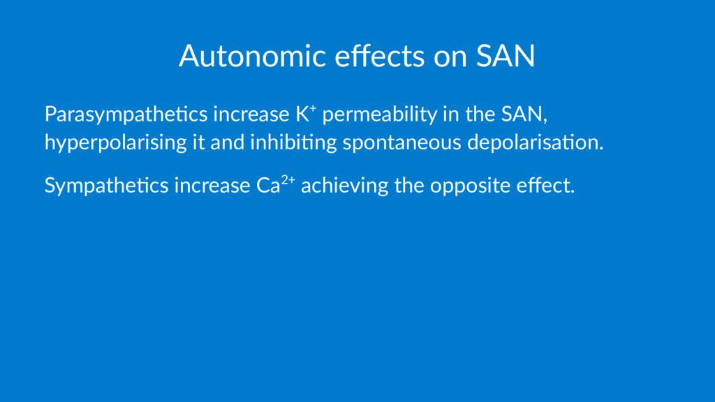 Autonomic effects on SAN Parasympathe+cs increas...