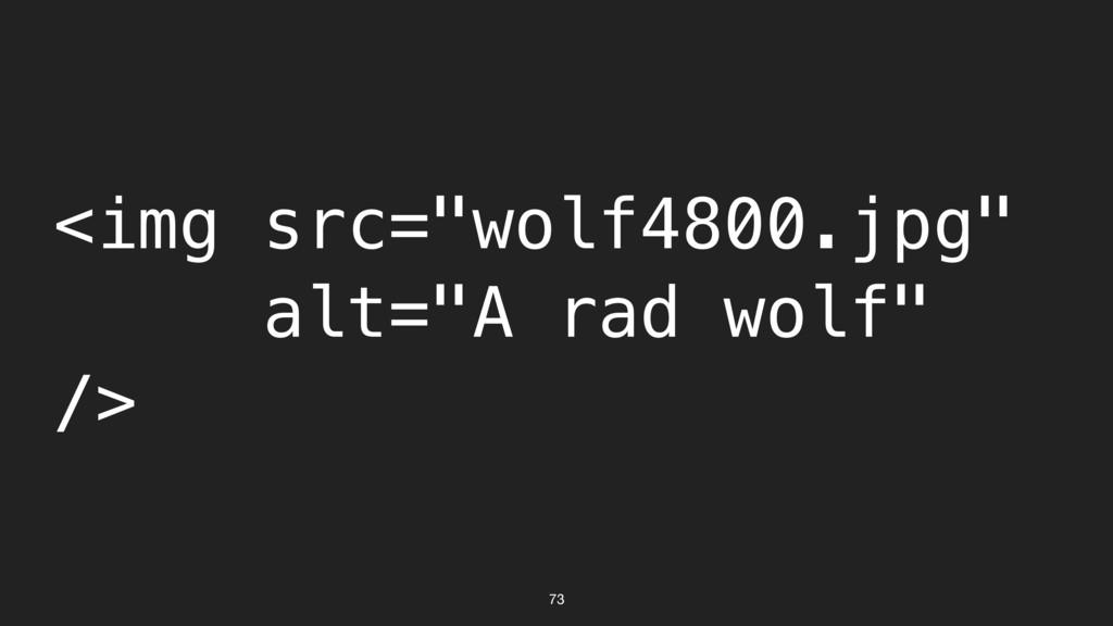 "73 <img src=""wolf4800.jpg"" alt=""A rad wolf"" />"
