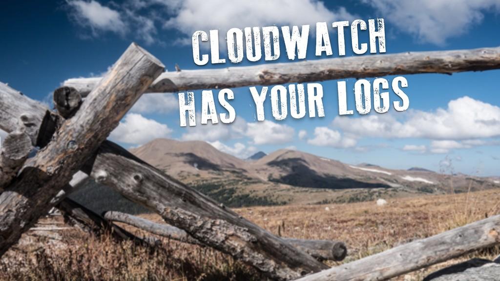 CLOUDWATCH HAS YOUR LOGS
