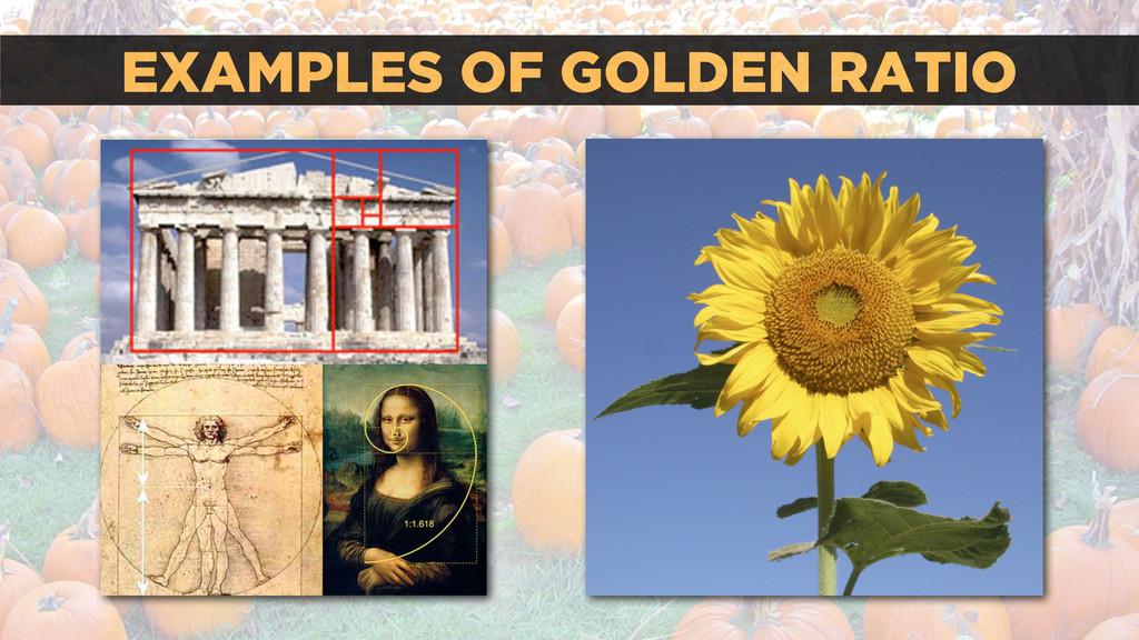EXAMPLES OF GOLDEN RATIO