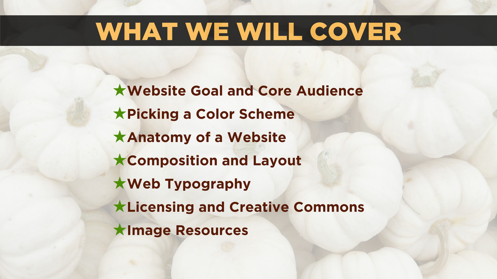 WHAT WE WILL COVER ★Website Goal and Core Audie...