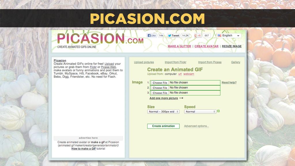 PICASION.COM