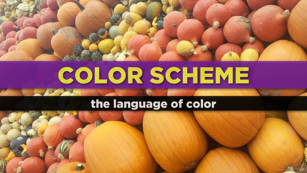 COLOR SCHEME the language of color