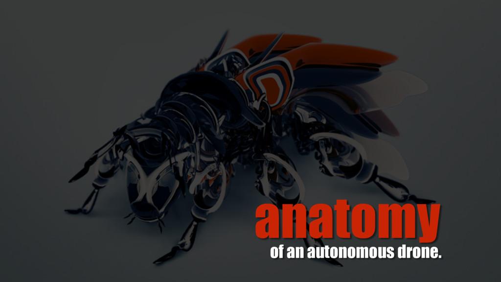 anatomy of an autonomous drone.