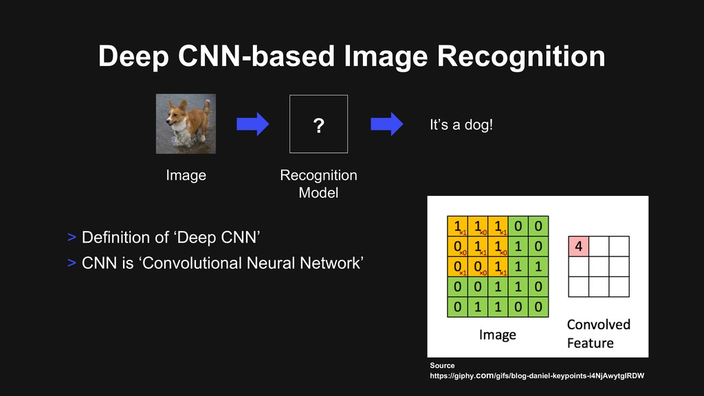 Deep CNN-based Image Recognition > Definition o...