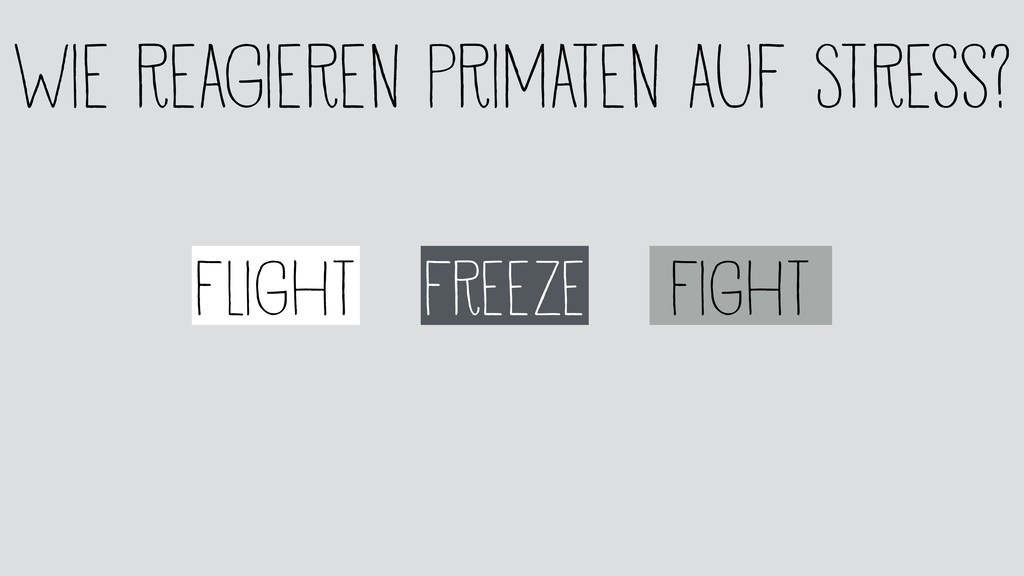 Freeze Flight Fight Wie reagieren Primaten auf ...