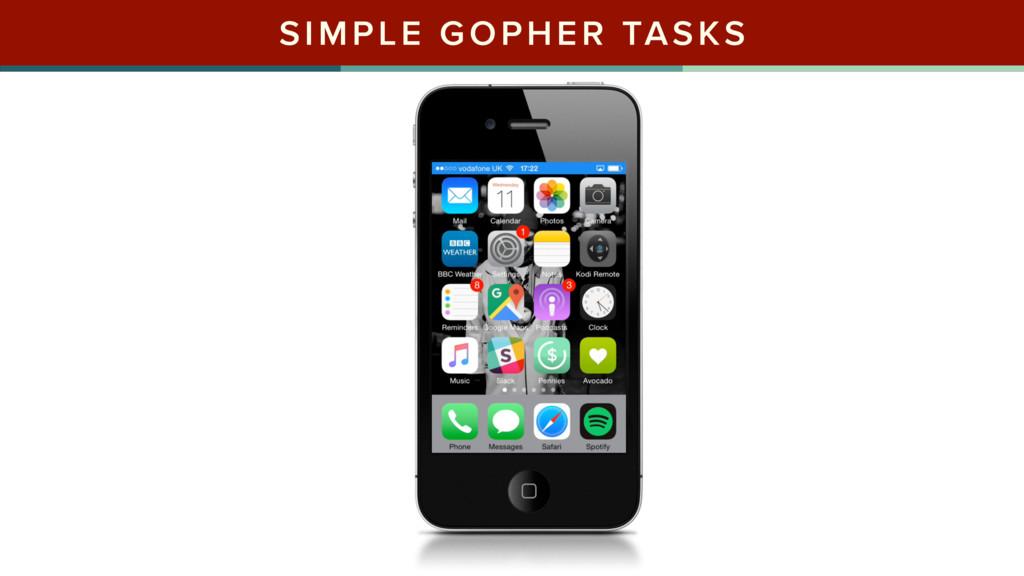 SIMPLE GOPHER TASKS