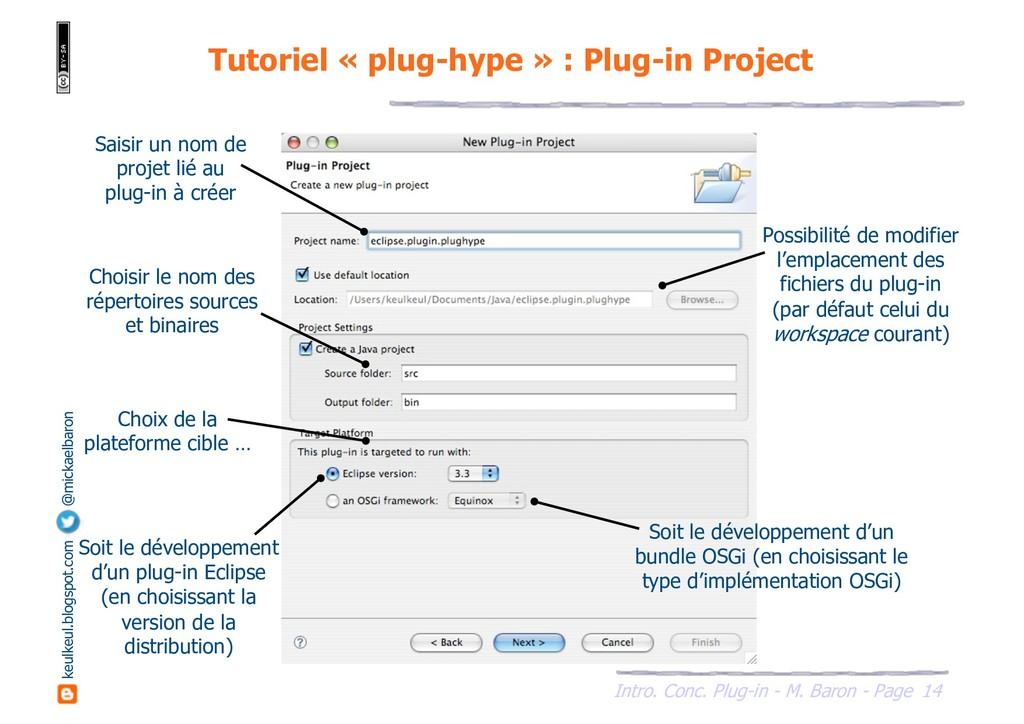 14 Intro. Conc. Plug-in - M. Baron - Page keulk...