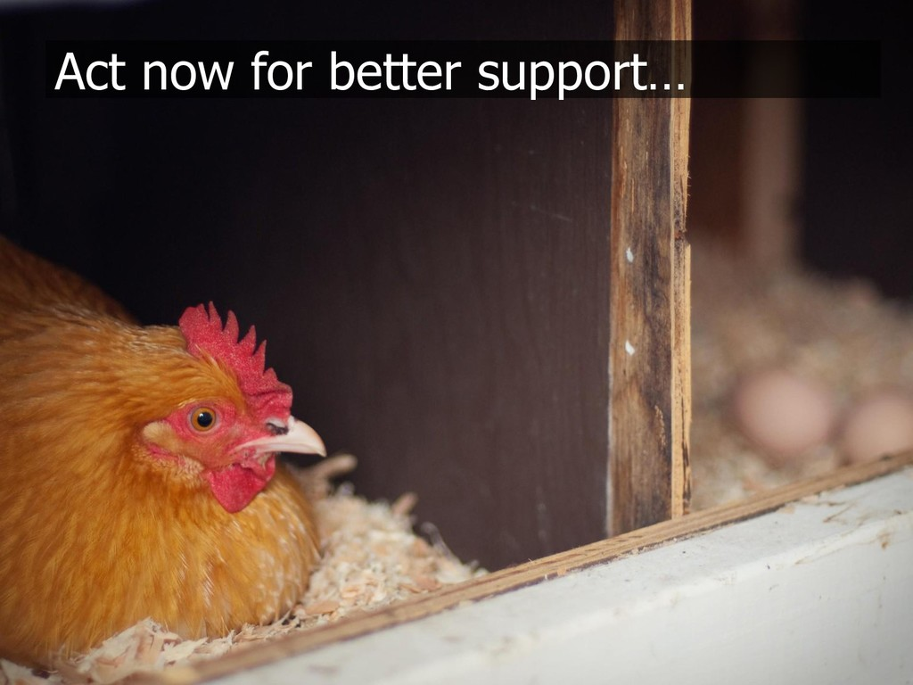 Act now for better support…
