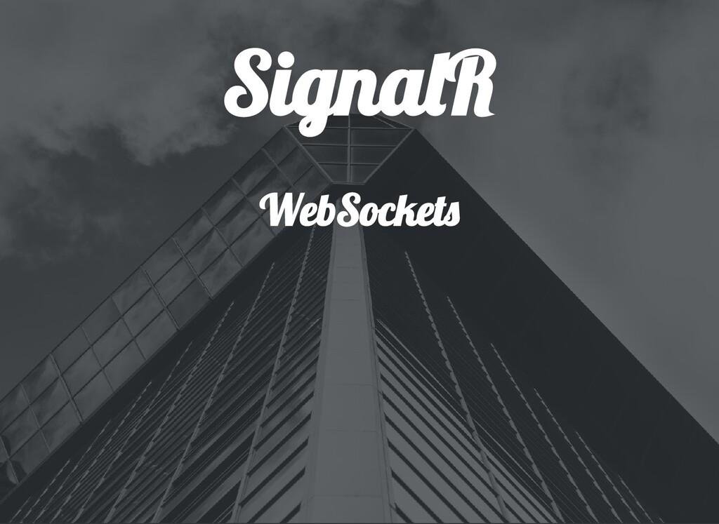 Signa R WebSocket