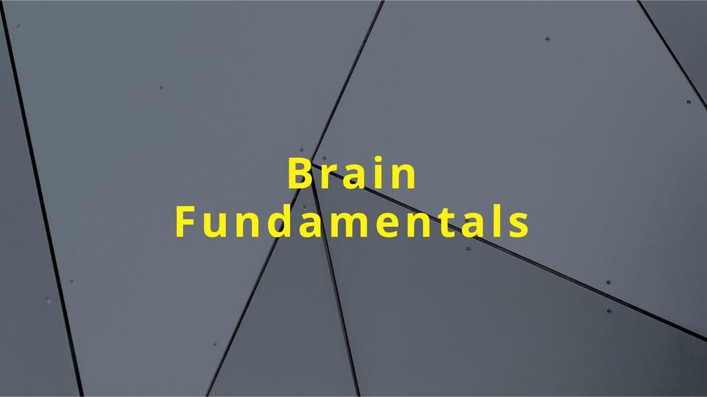 Brain Fundamentals