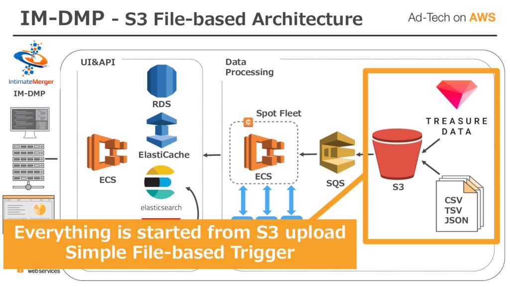 ECS RDS ElastiCache CSV TSV JSON SQS IM-DMP UI&...