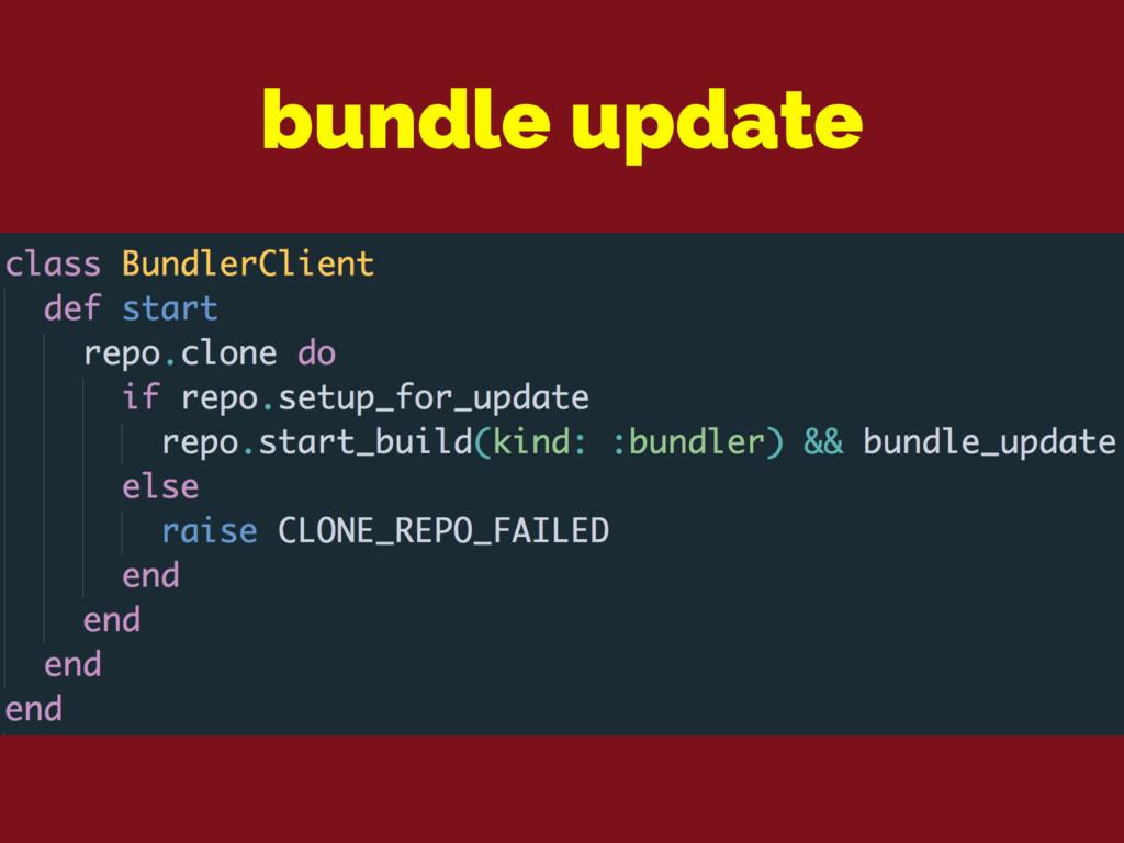bundle update