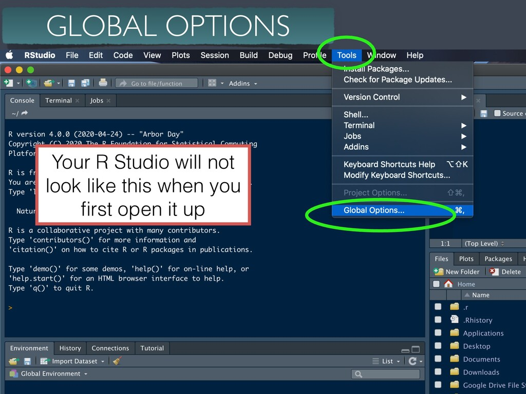 14 GLOBAL OPTIONS Your R Studio will not look l...