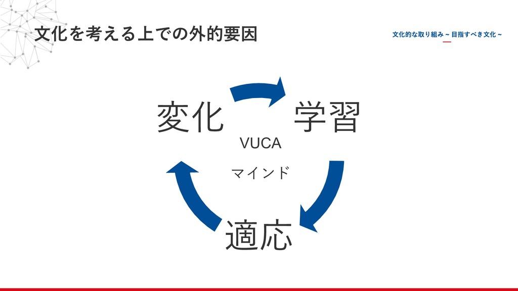 ⽂化を考える上での外的要因 学習 適応 変化 VUCA マインド