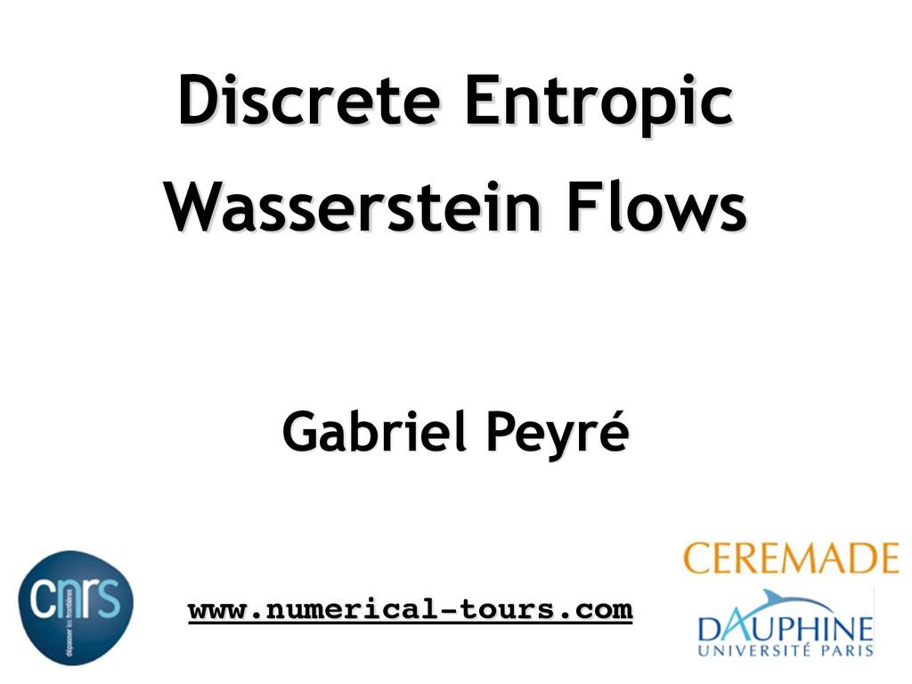 Discrete Entropic Wasserstein Flows Gabriel Pe...