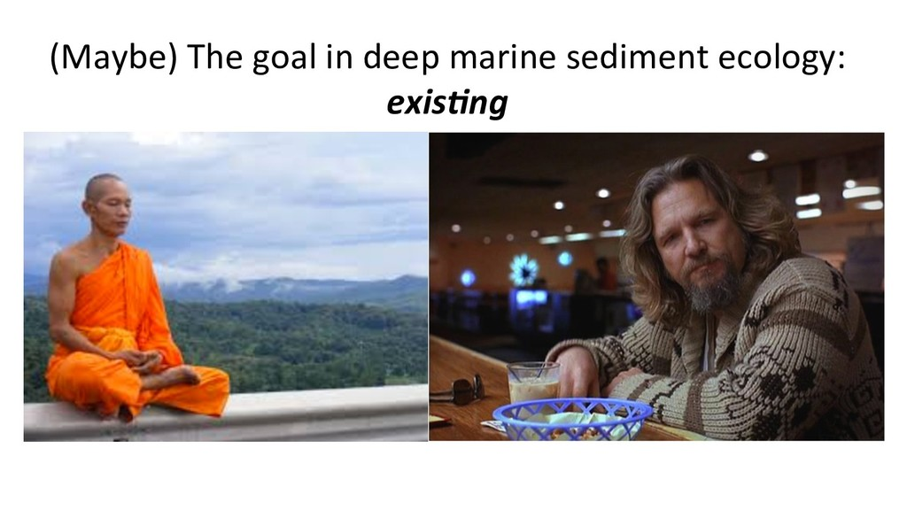(Maybe) The goal in deep marine sediment ecolog...