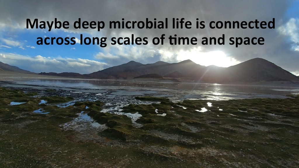 Maybe deep microbial life is connected across l...